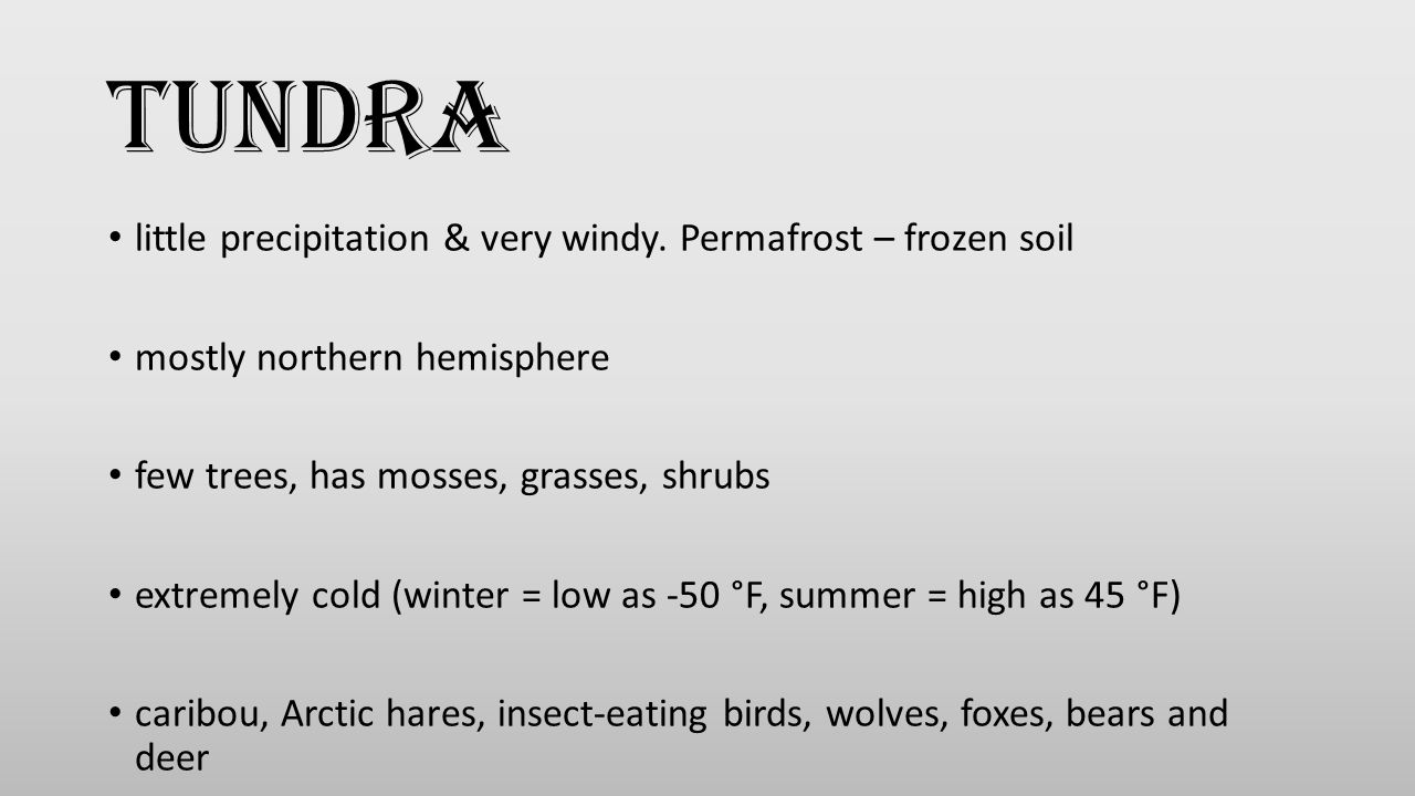 Tundra little precipitation & very windy. Permafrost – frozen soil