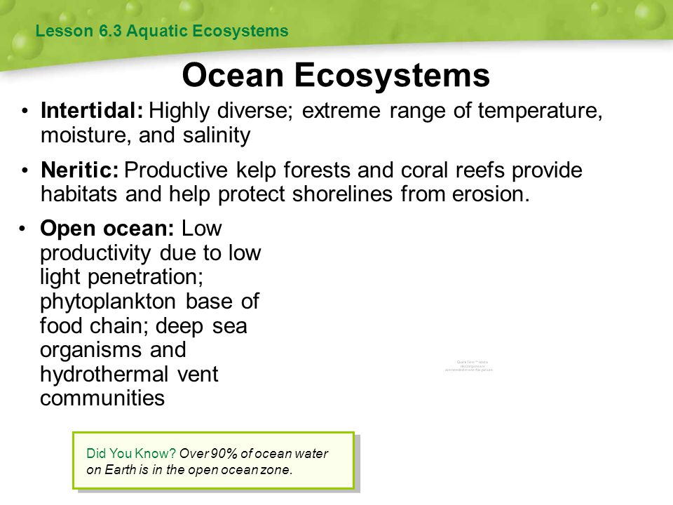 Lesson 6.3 Aquatic Ecosystems