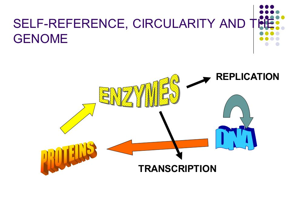 SELF-REFERENCE, CIRCULARITY AND THE GENOME