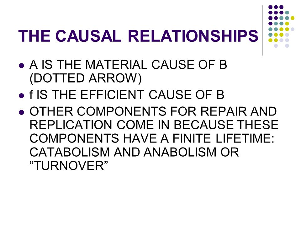 THE CAUSAL RELATIONSHIPS