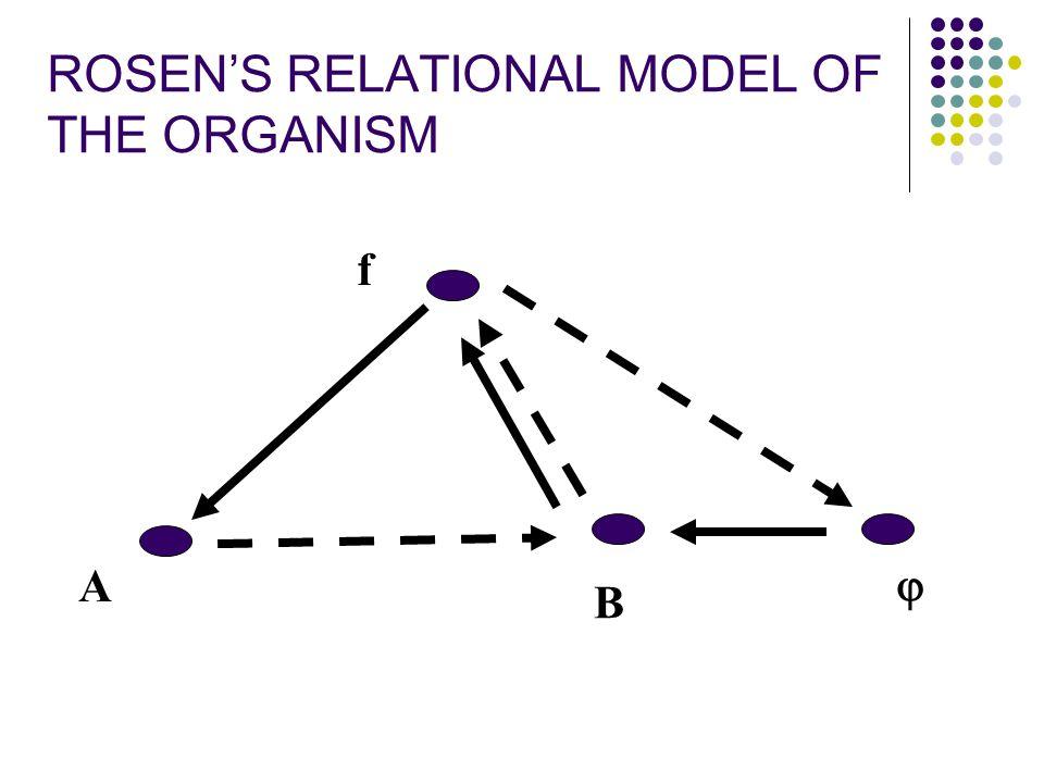 ROSEN'S RELATIONAL MODEL OF THE ORGANISM
