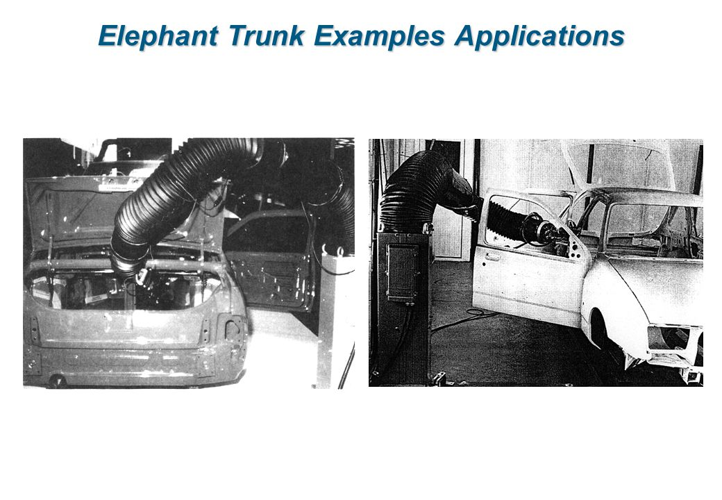 Elephant Trunk Examples Applications