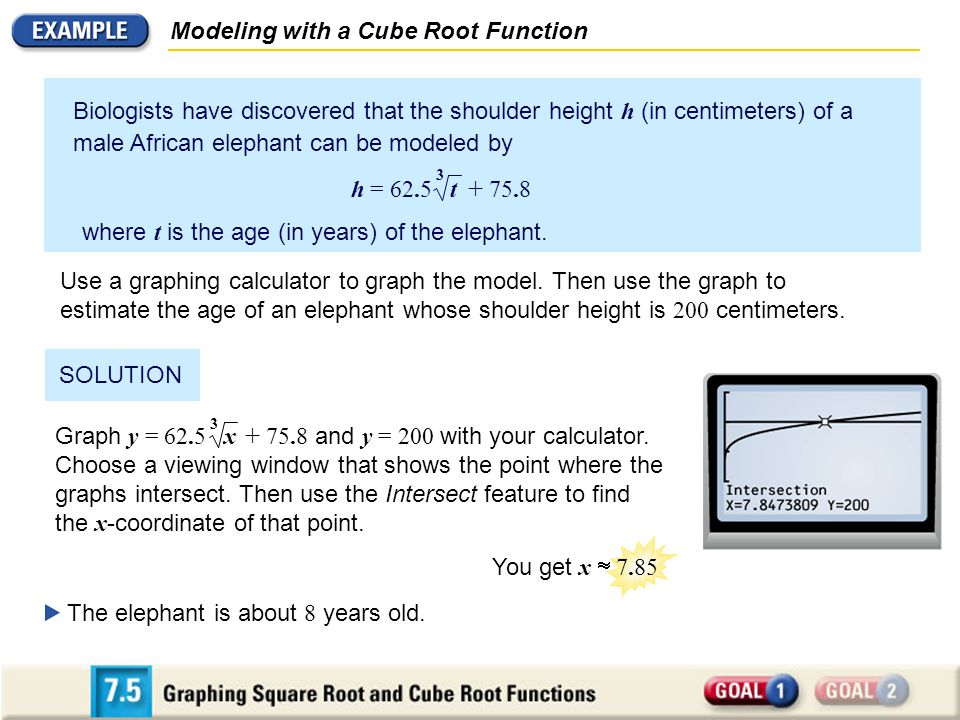 Modeling with a Cube Root Function