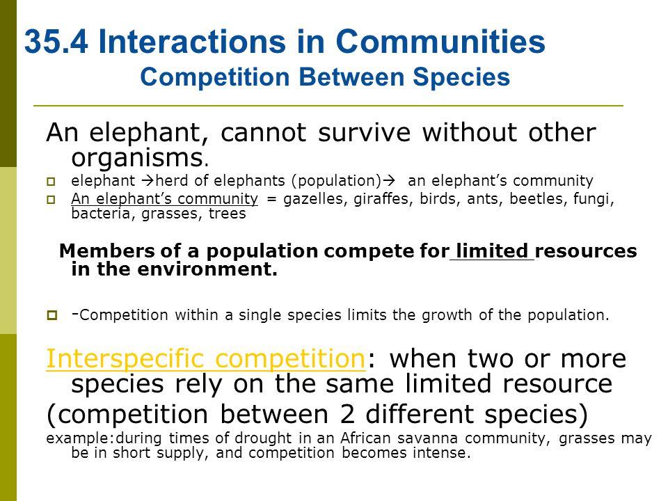 Competition Between Species