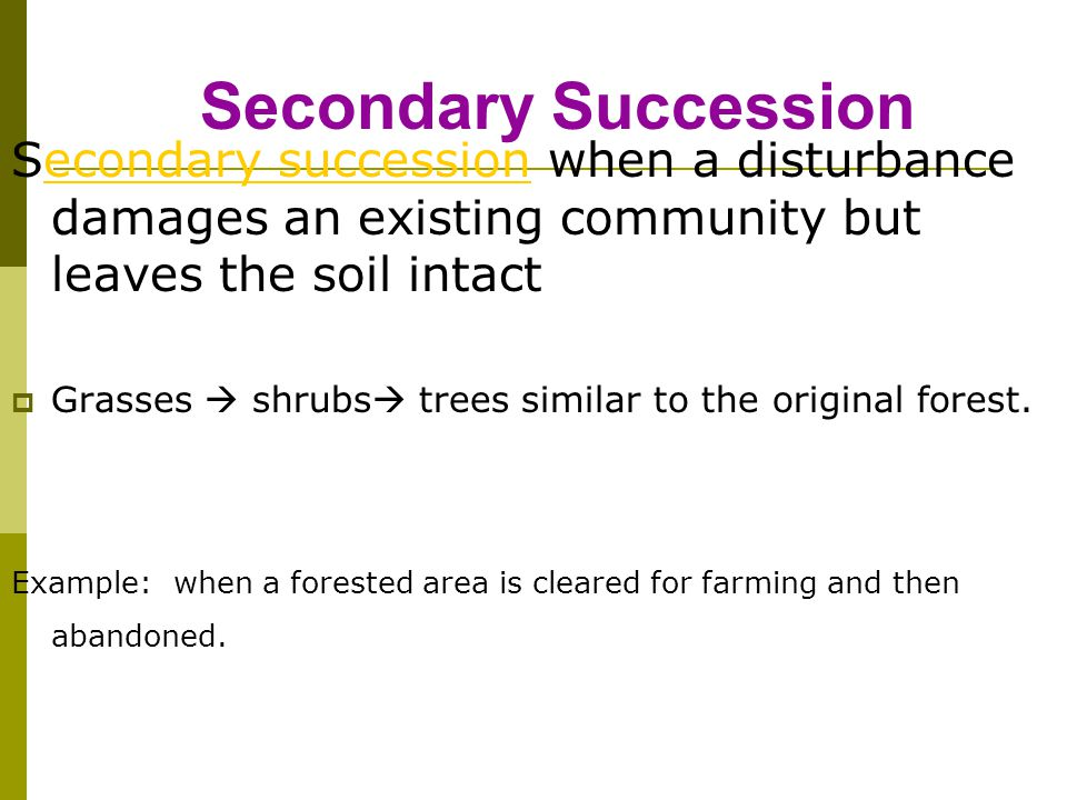 Secondary Succession Secondary succession when a disturbance damages an existing community but leaves the soil intact.