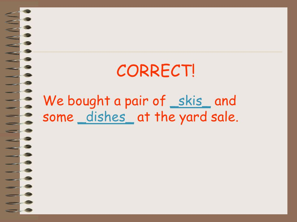 CORRECT! We bought a pair of _skis_ and some _dishes_ at the yard sale.
