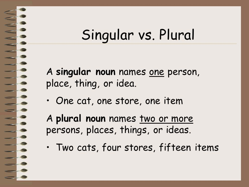 Singular vs. Plural A singular noun names one person, place, thing, or idea. One cat, one store, one item.