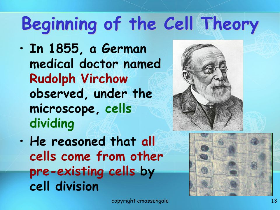 Beginning of the Cell Theory
