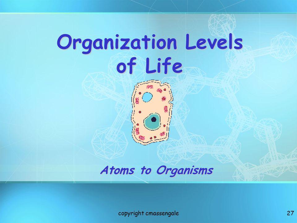 Organization Levels of Life