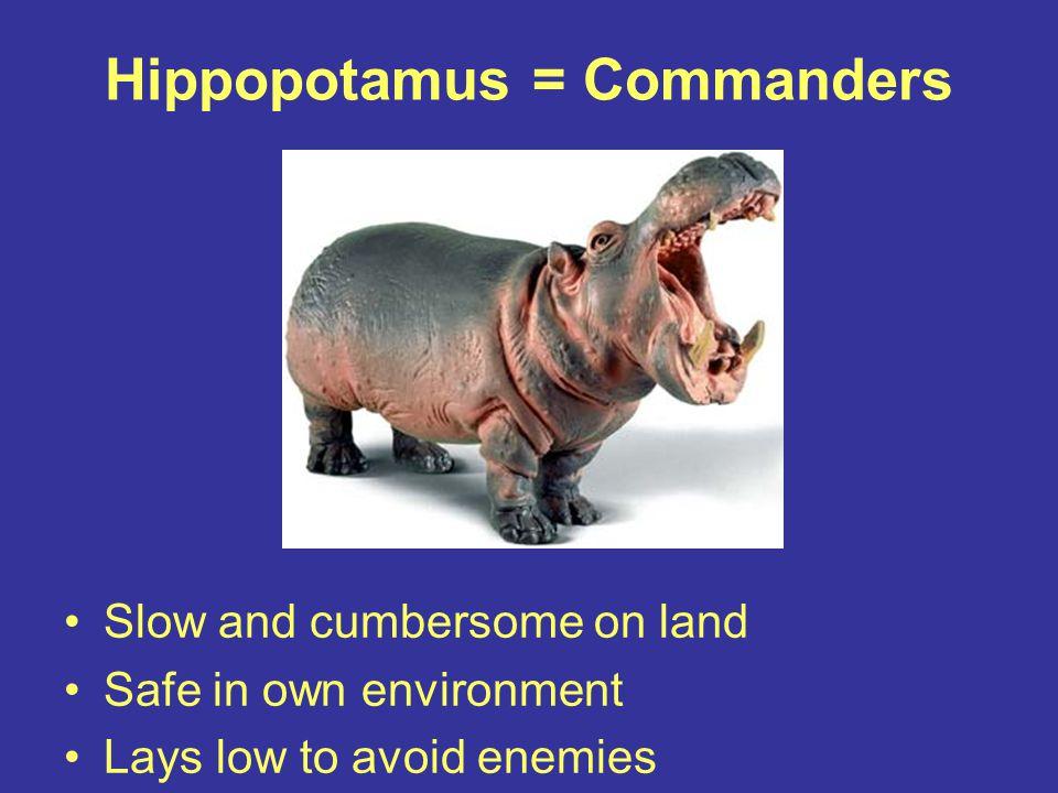 Hippopotamus = Commanders