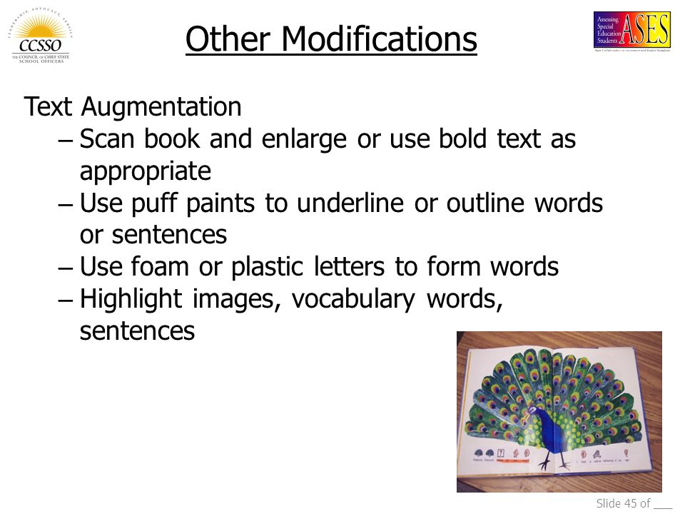Other Modifications Text Augmentation