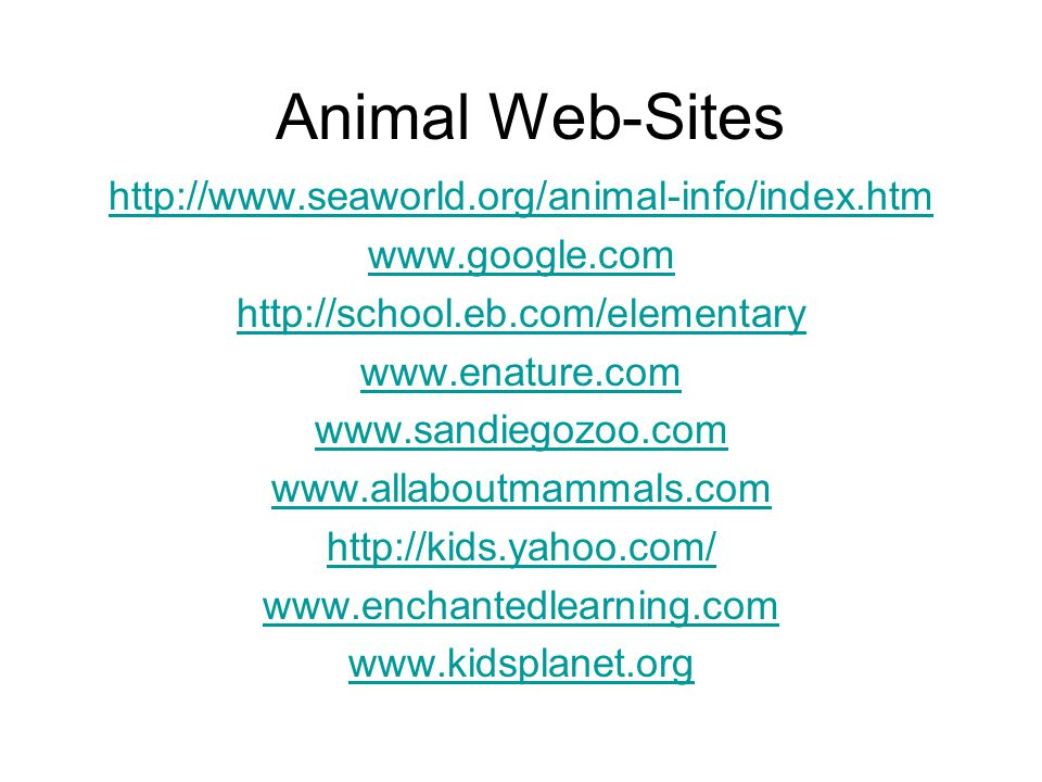 Animal Web-Sites http://www.seaworld.org/animal-info/index.htm