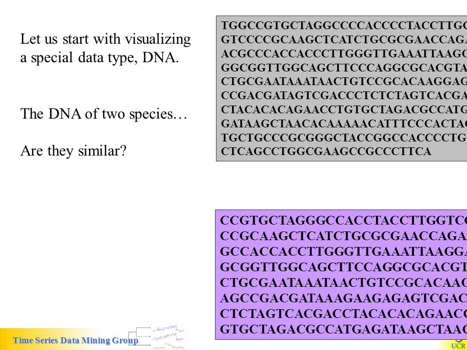 Let us start with visualizing a special data type, DNA.