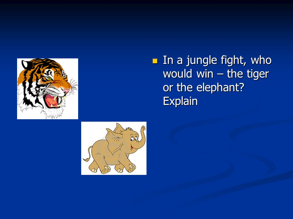 In a jungle fight, who would win – the tiger or the elephant Explain