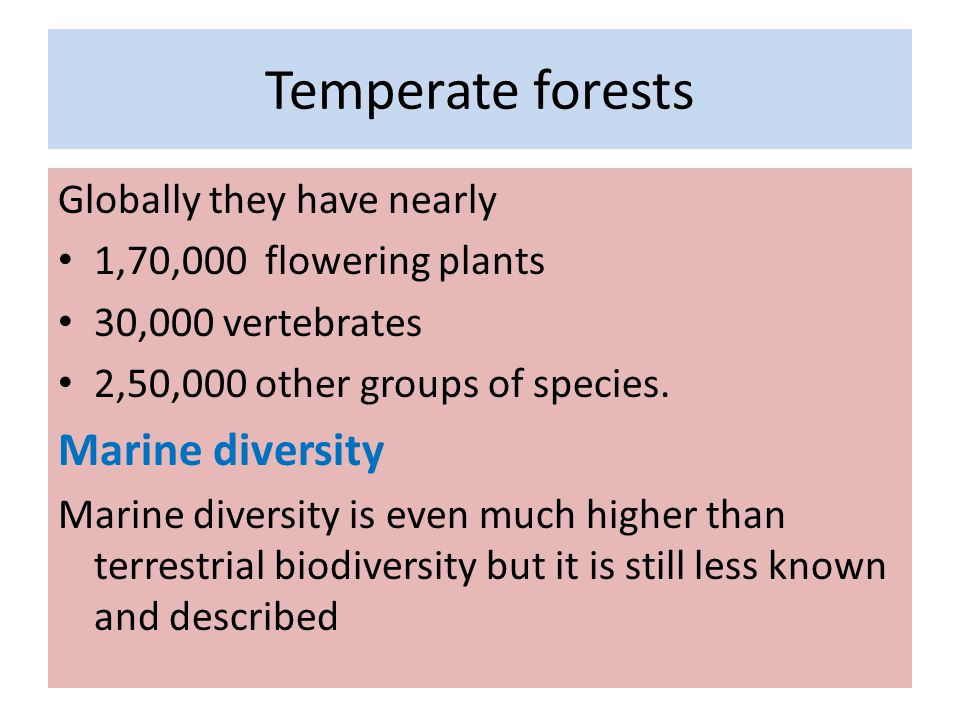 Temperate forests Marine diversity Globally they have nearly