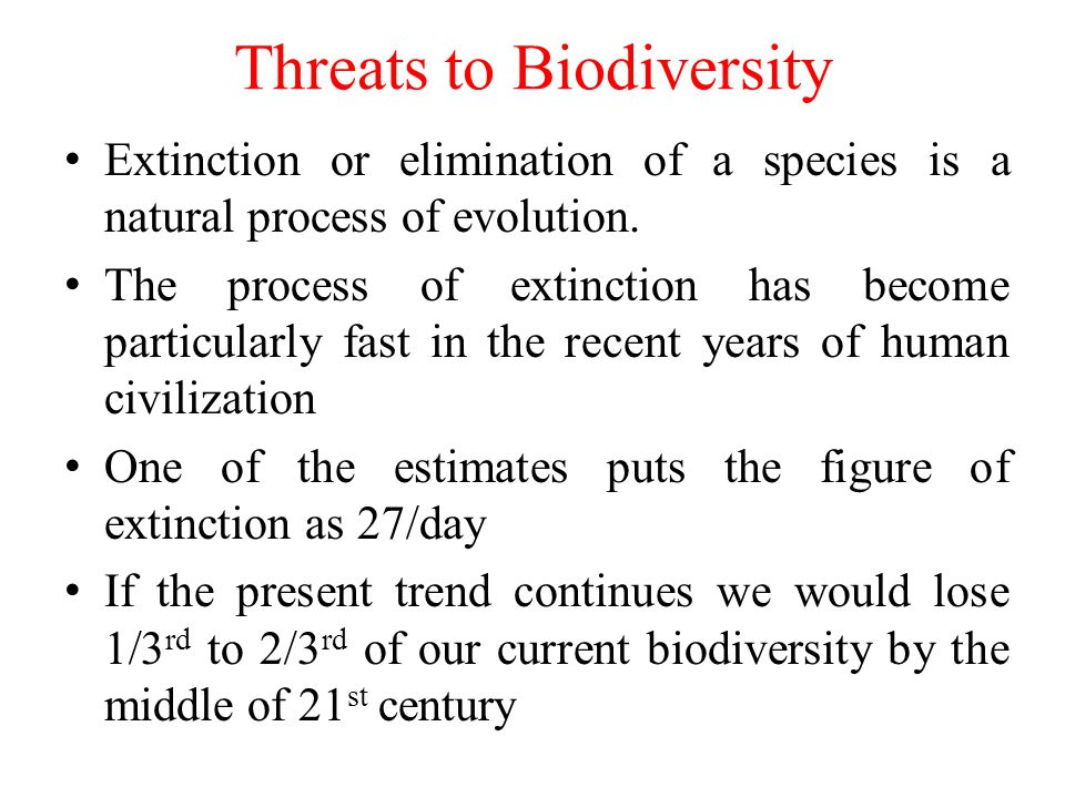 Top 6 Biggest Threats To Biodiversity
