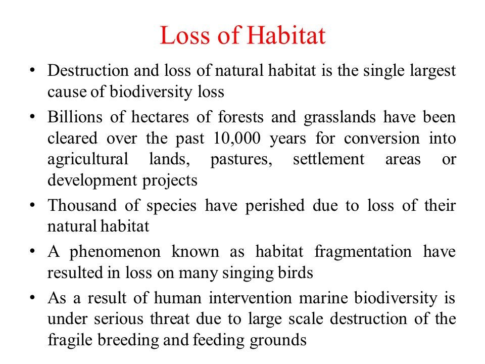 Loss of Habitat Destruction and loss of natural habitat is the single largest cause of biodiversity loss.