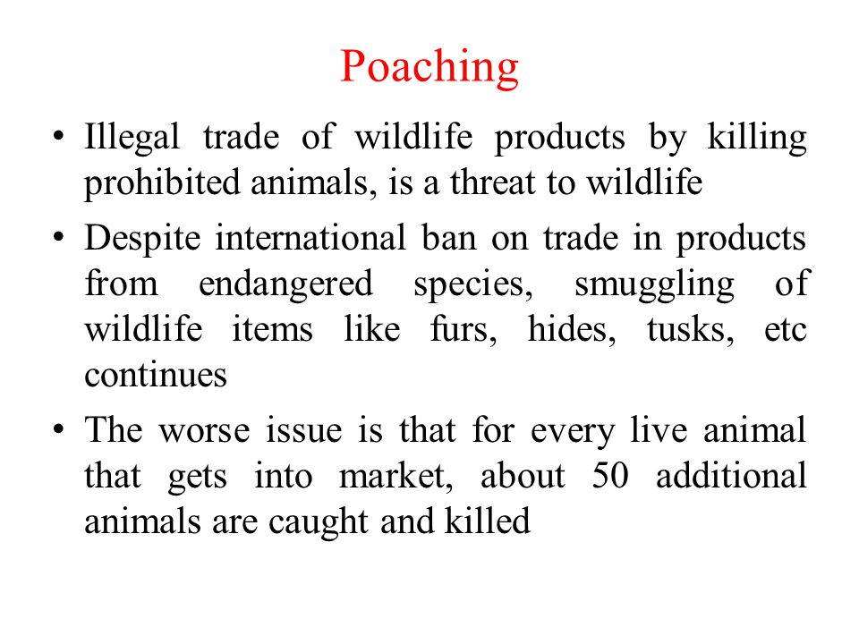 Poaching Illegal trade of wildlife products by killing prohibited animals, is a threat to wildlife.