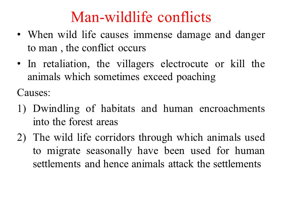 Man-wildlife conflicts