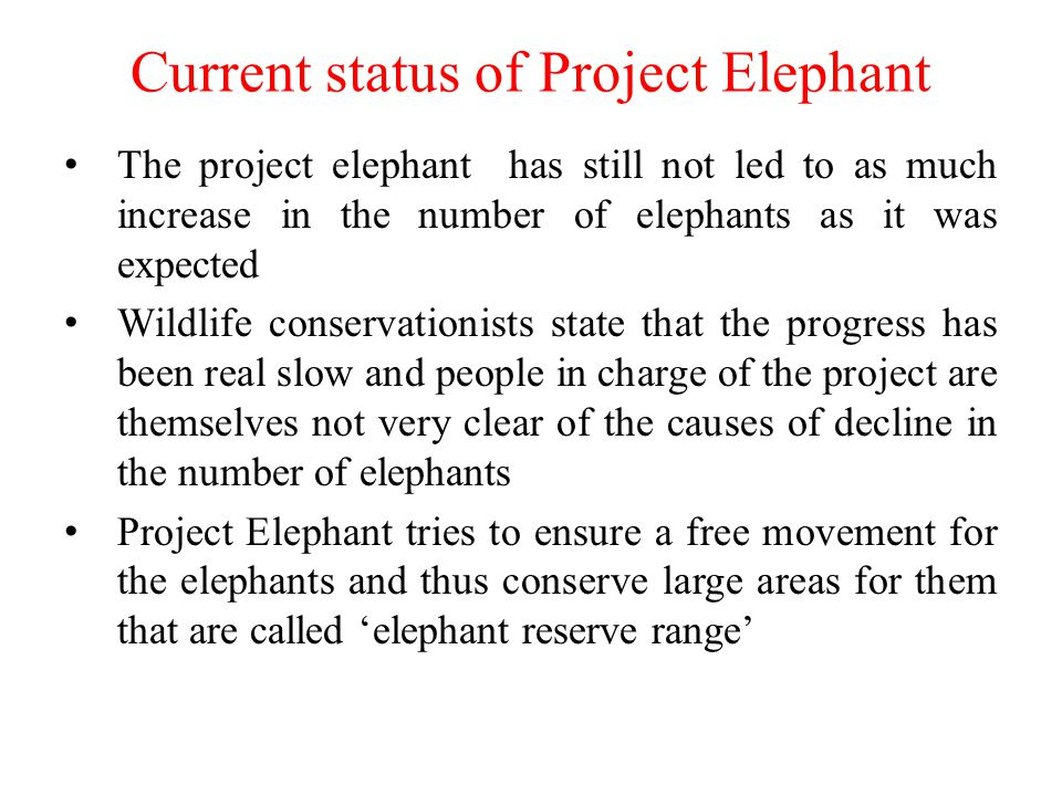 Current status of Project Elephant