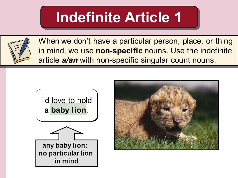 I'd love to hold a baby lion.