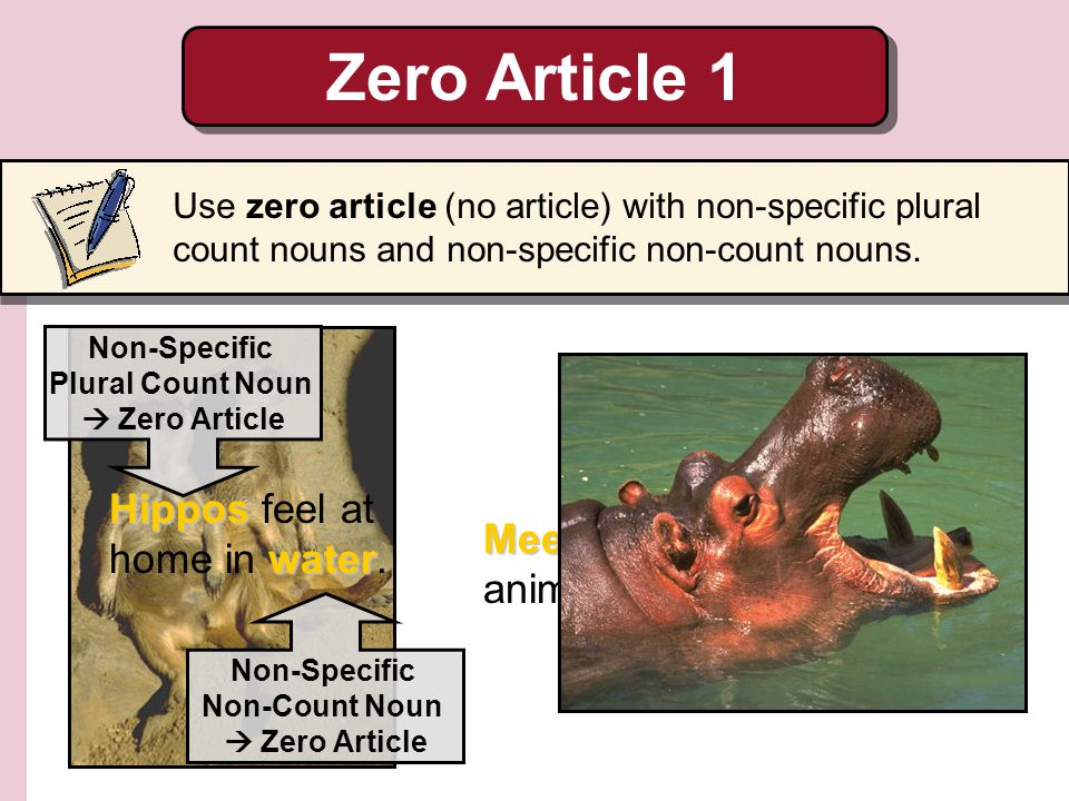 Zero Article 1 Hippos feel at home in water.