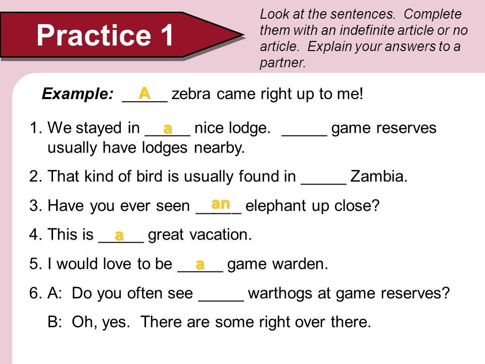 Practice 1 Example: _____ zebra came right up to me! A