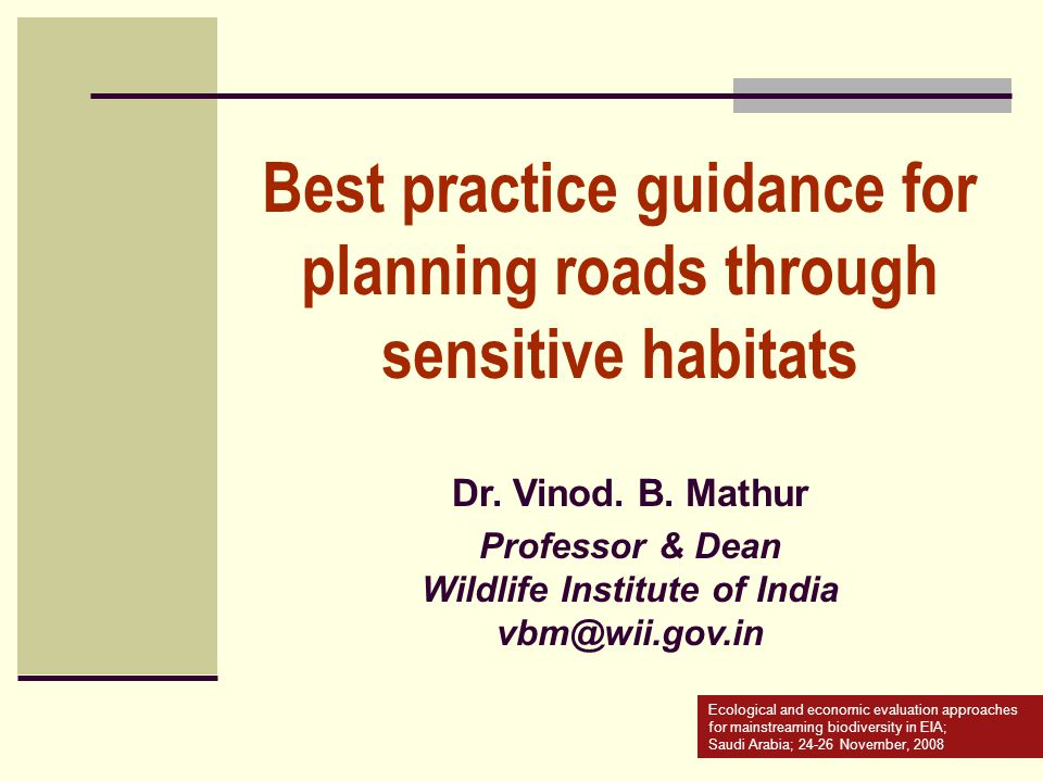 Best practice guidance for planning roads through sensitive habitats
