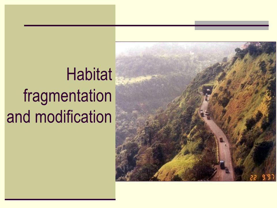 Habitat fragmentation and modification