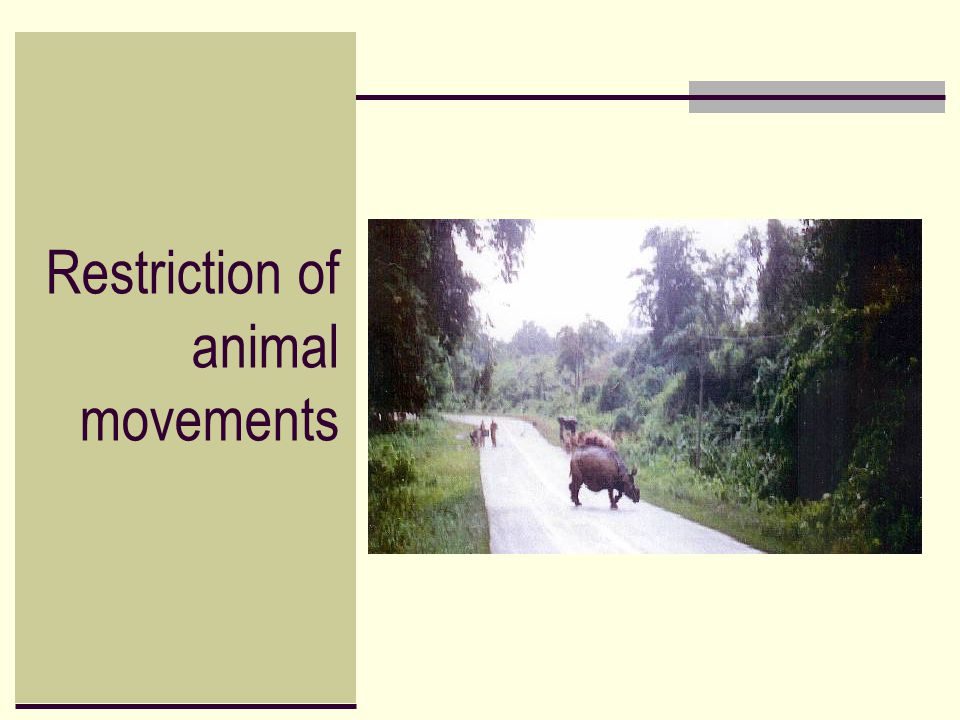 Restriction of animal movements