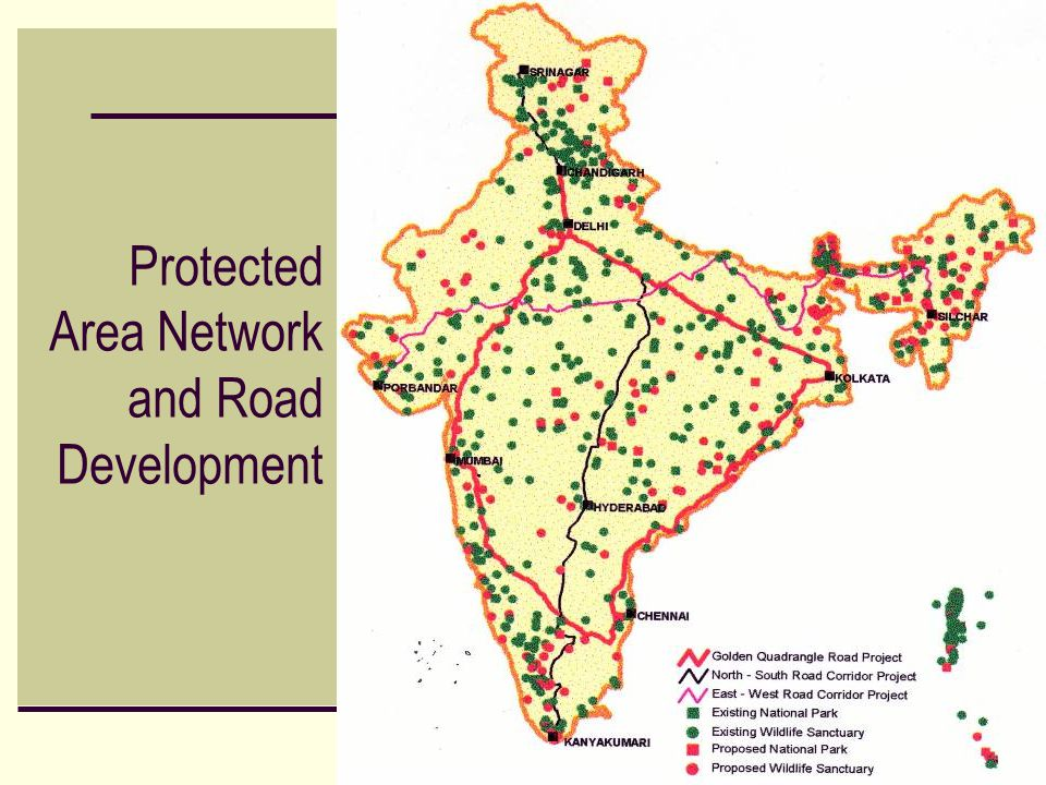 Protected Area Network and Road Development