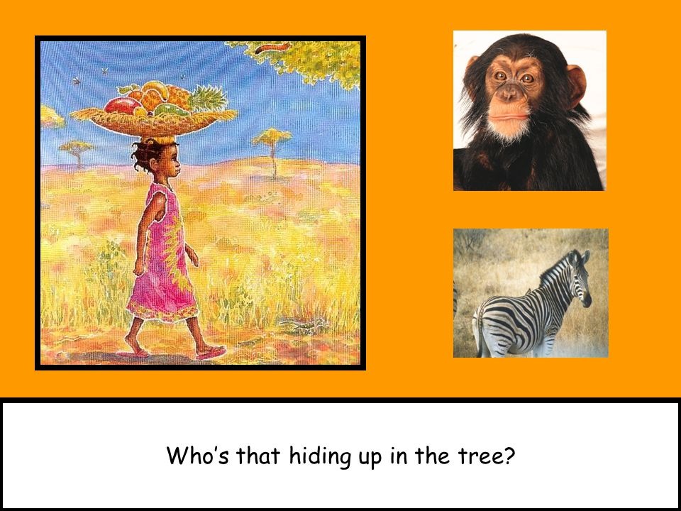 Who's that hiding up in the tree