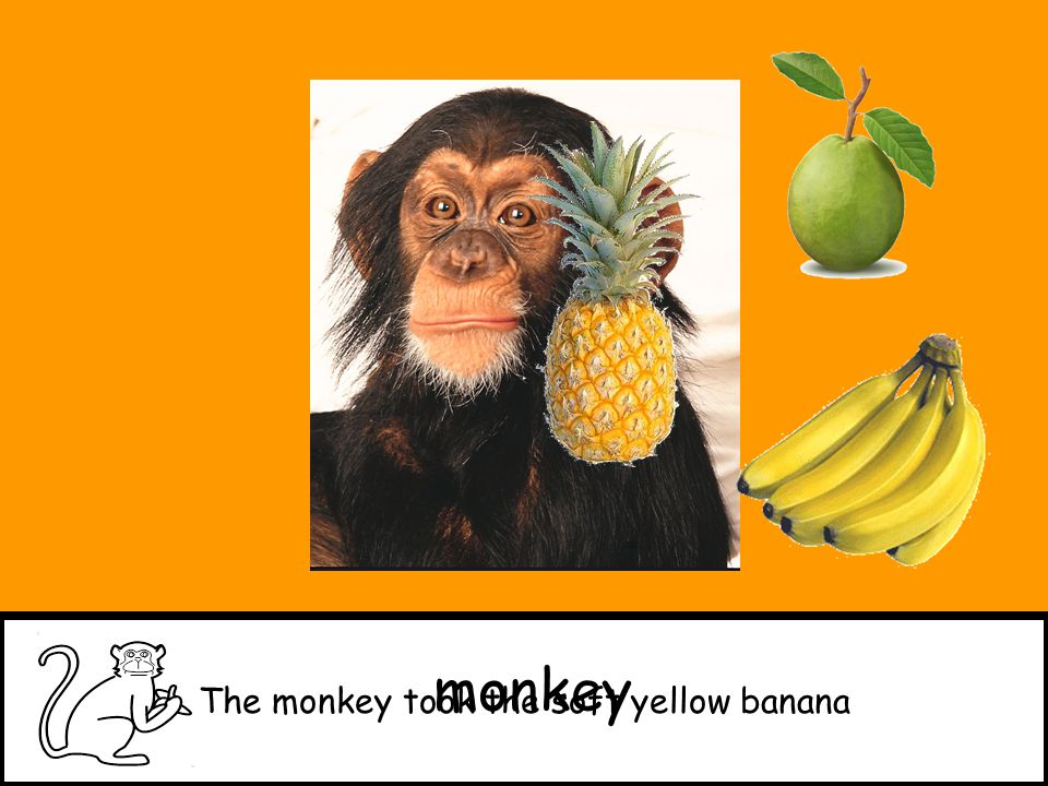 The monkey took the soft yellow banana