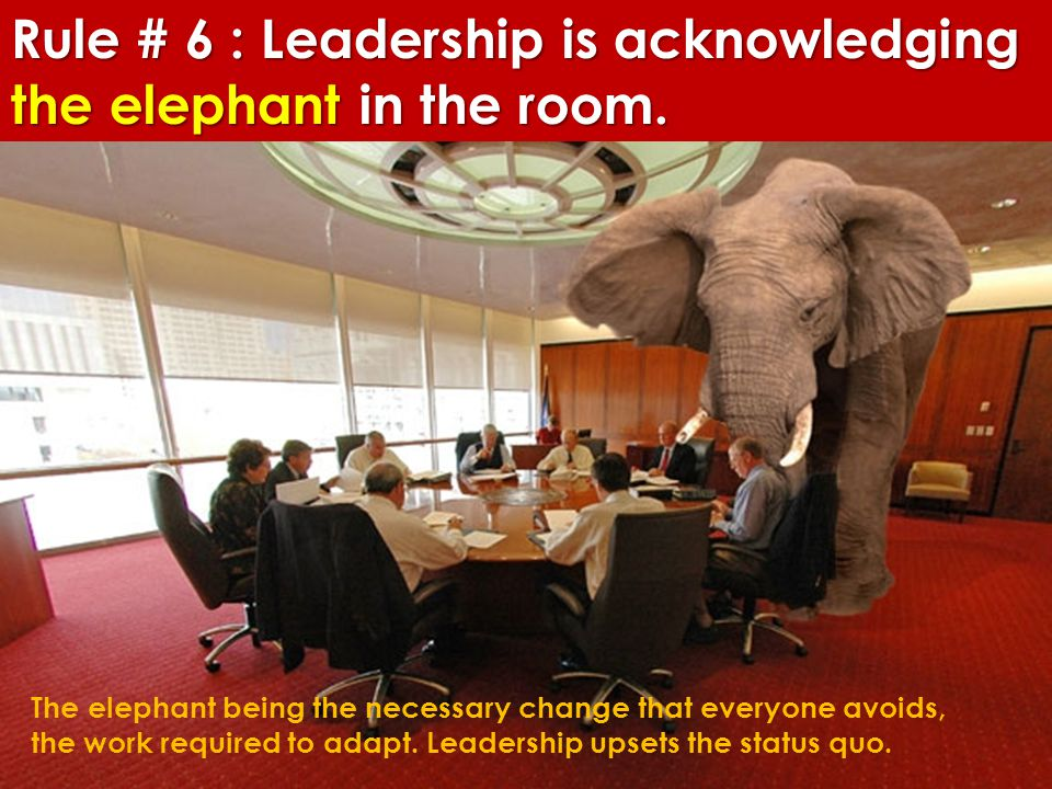 Rule # 6 : Leadership is acknowledging the elephant in the room.