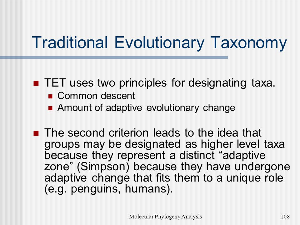 Traditional Evolutionary Taxonomy