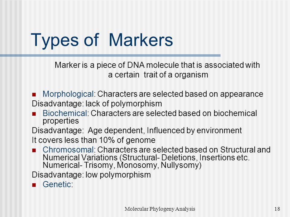 Types of Markers Marker is a piece of DNA molecule that is associated with. a certain trait of a organism.