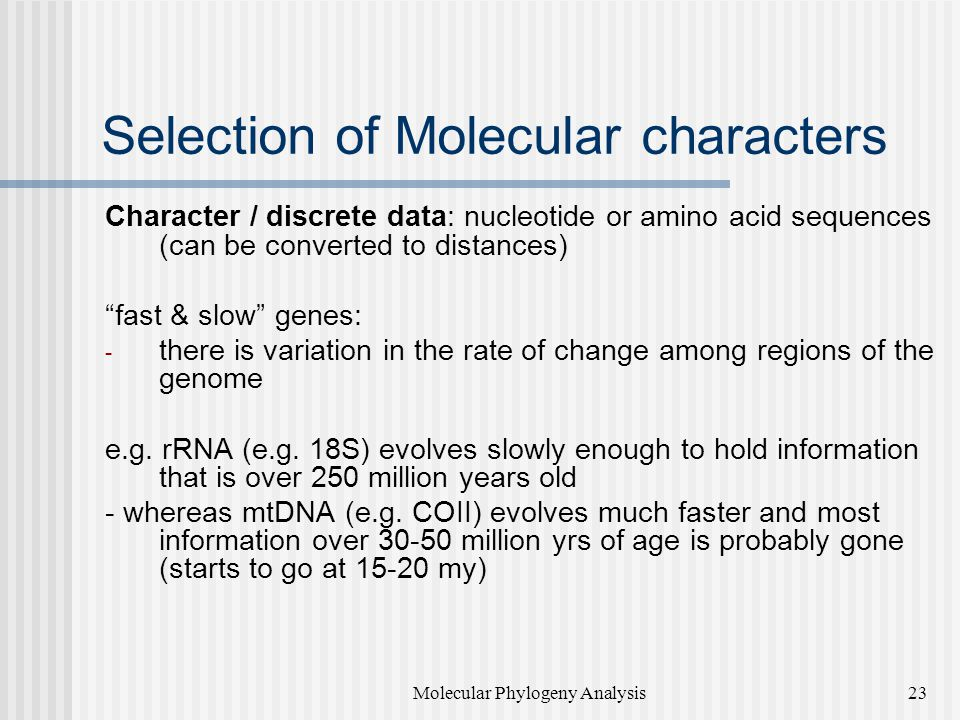 Selection of Molecular characters