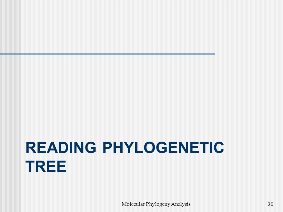 Reading Phylogenetic Tree