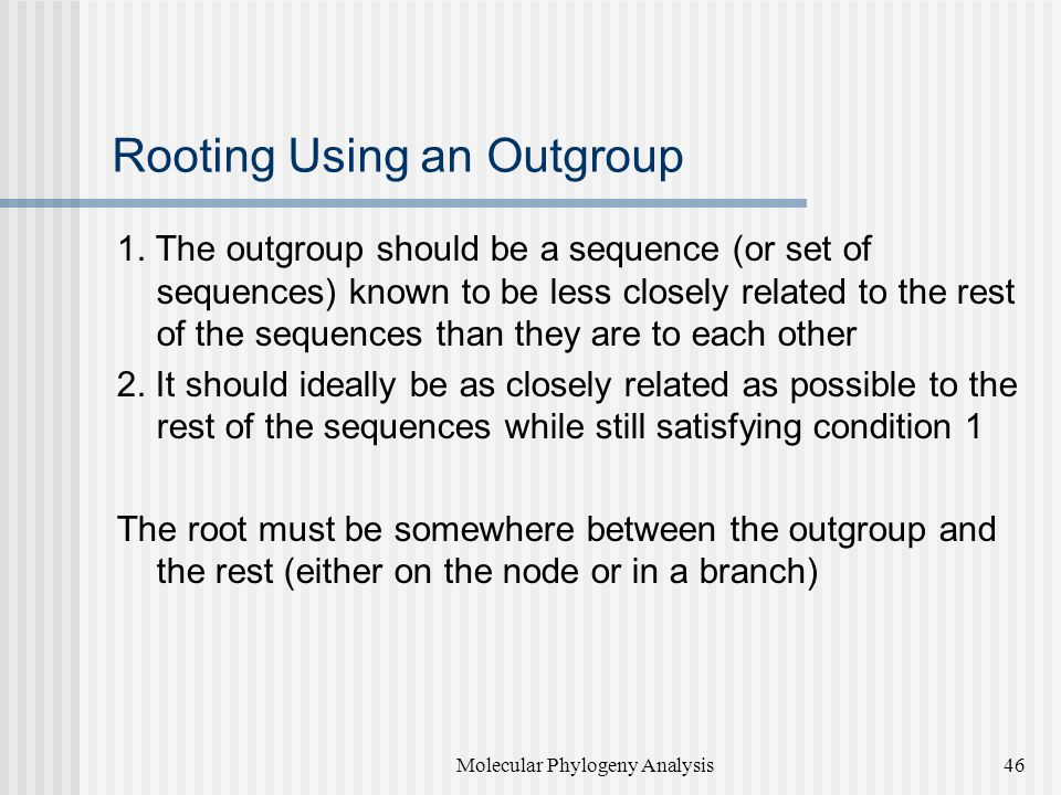 Rooting Using an Outgroup