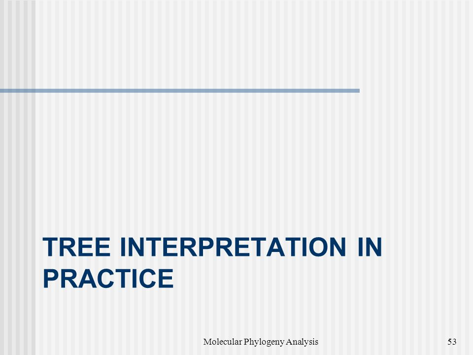 Tree interpretation in practice