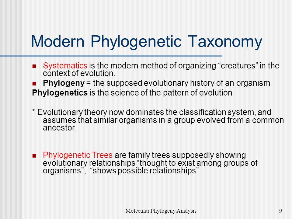 Modern Phylogenetic Taxonomy