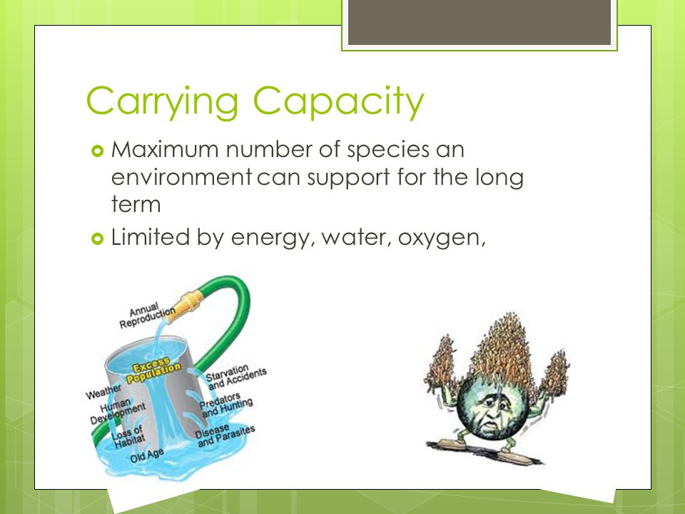Carrying Capacity Maximum number of species an environment can support for the long term.