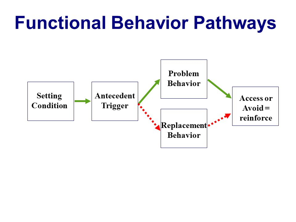 Functional Behavior Pathways Access or Avoid = reinforce
