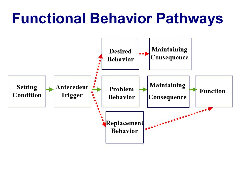 Functional Behavior Pathways MaintainingConsequence