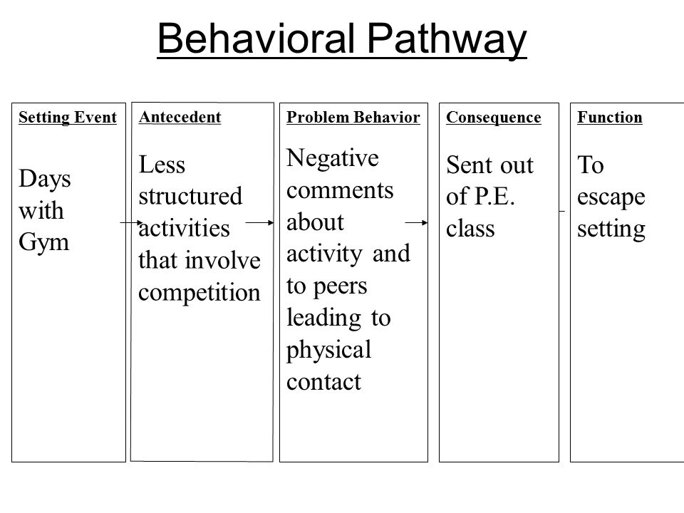 Behavioral Pathway Days with Gym