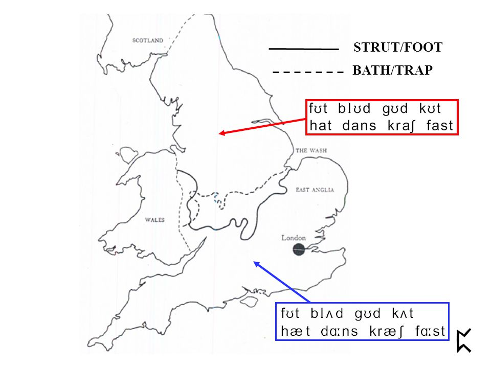STRUT/FOOT BATH/TRAP