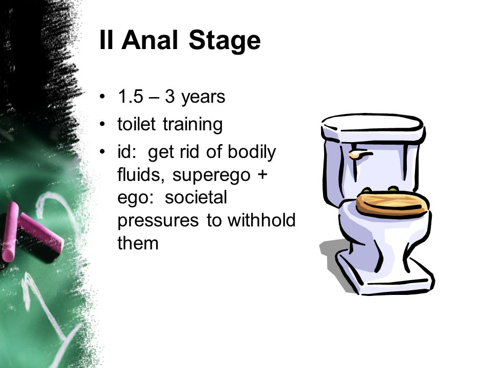 II Anal Stage 1.5 – 3 years toilet training