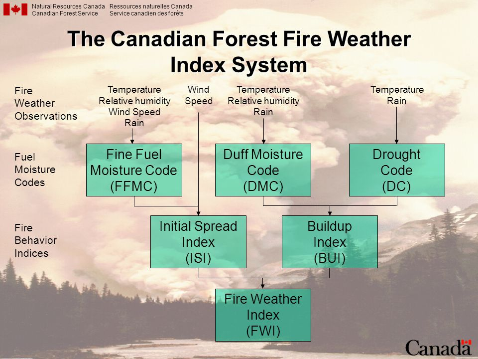 The Canadian Forest Fire Weather Index System