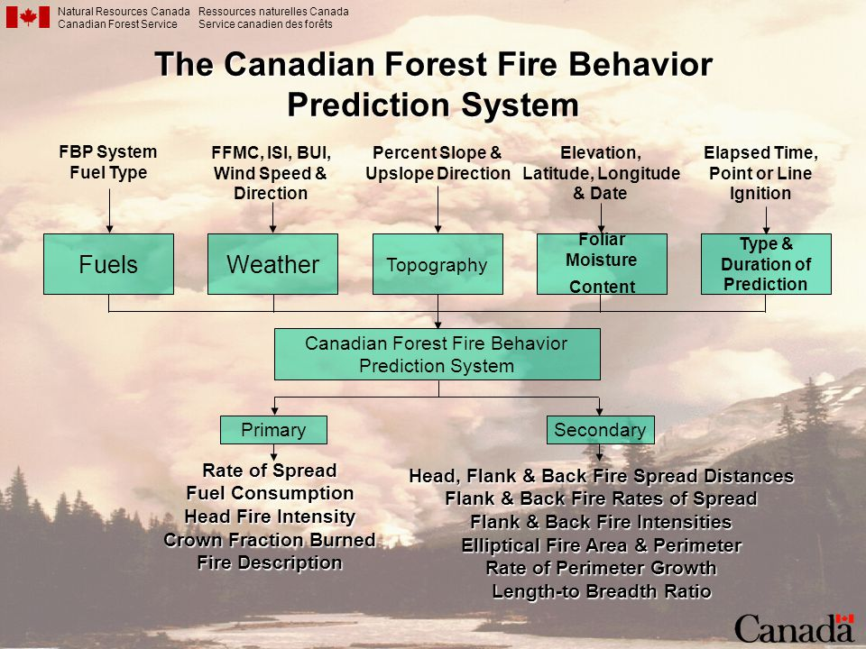 The Canadian Forest Fire Behavior Prediction System