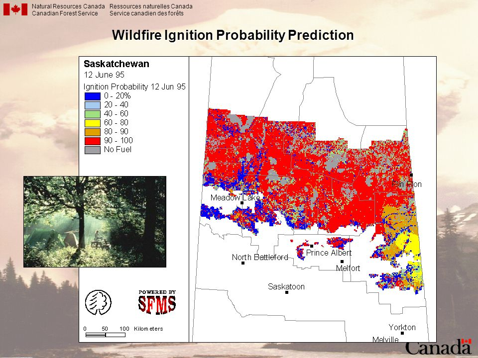 Wildfire Ignition Probability Prediction